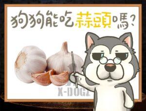 b garlic