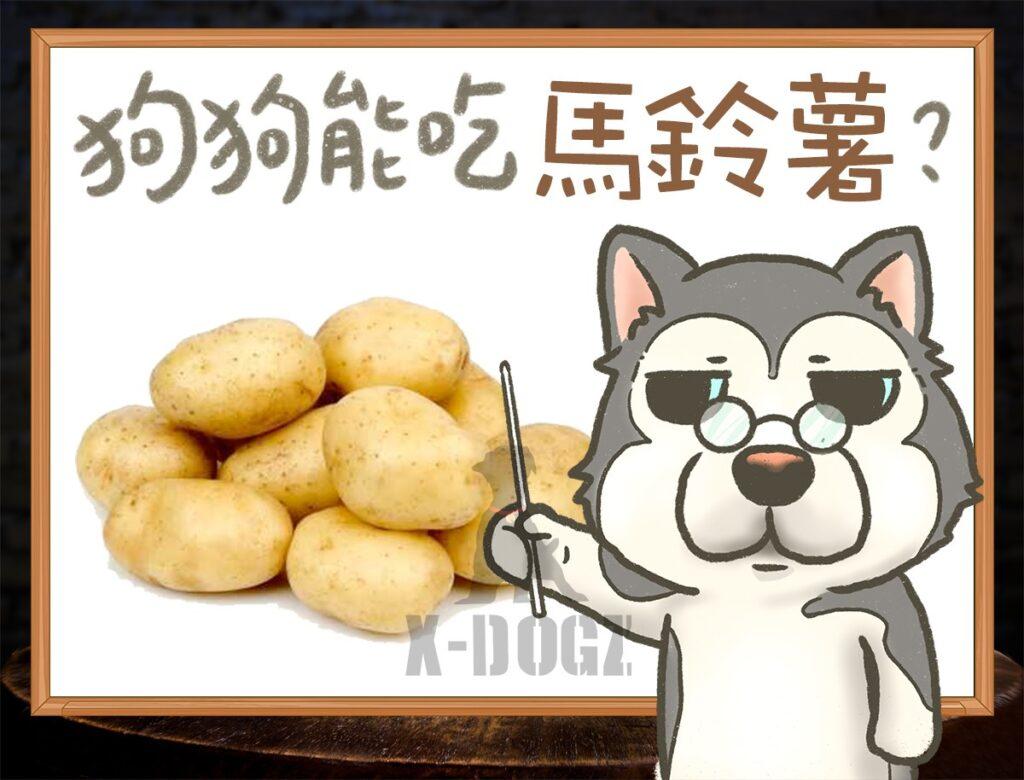 b potato