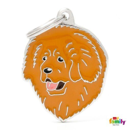 my family 名牌 x 客製化 西藏獒犬 1