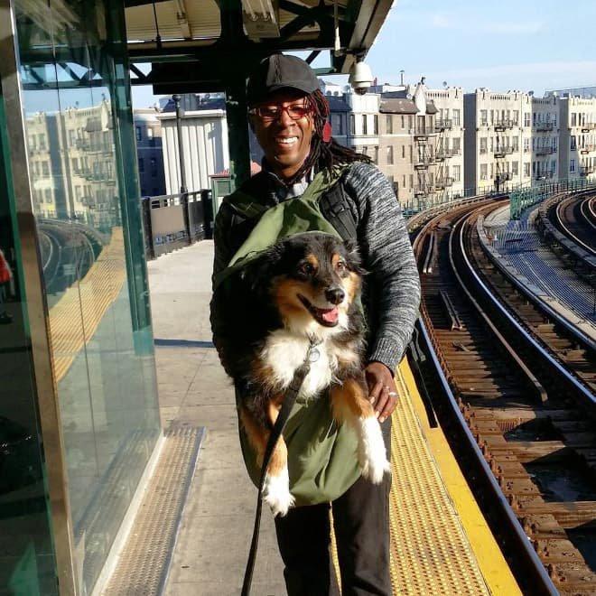 nyc subway dog9