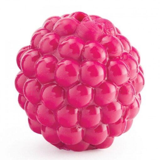 planet dog raspberry 可愛覆盆子 1